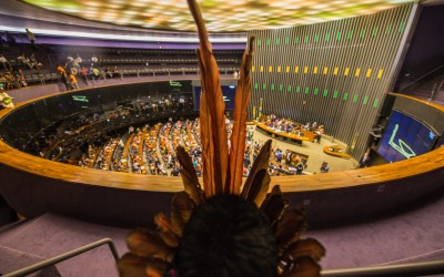 Letter to the indigenous people of Brazil: for an even more indigenous parliament