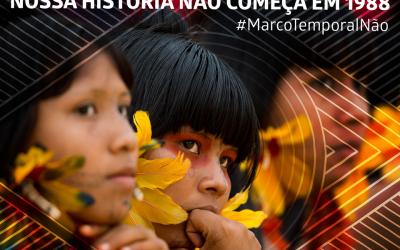 Convocatória – Mobilização Nacional no aniversário de 10 anos da Declaração da ONU sobre os direitos dos povos indígenas