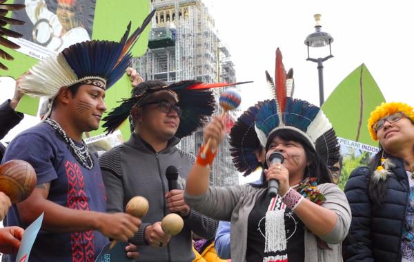 COP 23: Survival pede maior presença indígena na conferência climática