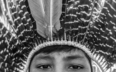 VUKÁPANAVO – o despertar do povo Terena para os seus direitos: movimento indígena e confronto político