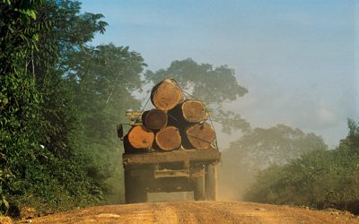 APIB note about  data of Brazil's increasing deforestation