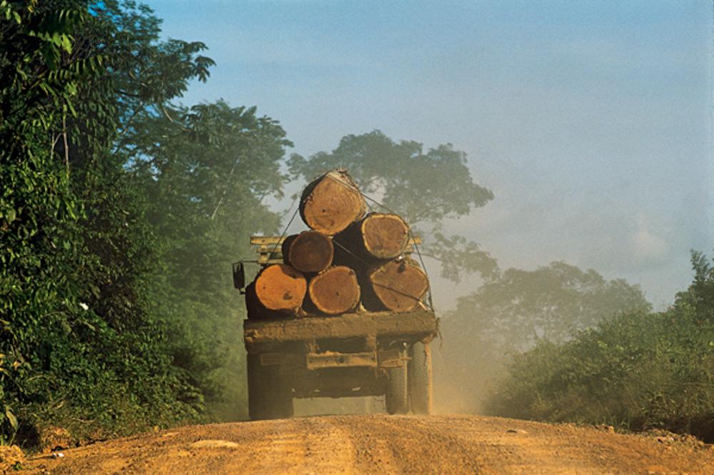 Nota da APIB sobre os dados do aumento do desmatamento no Brasil