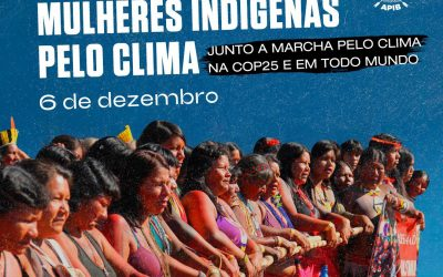 Mulheres indígenas convocam Ação Global pelo Clima!