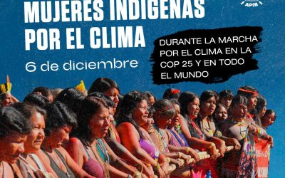 ¡Mujeres indígenas convocan a la Acción Global de lo Clima!