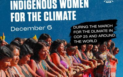 Indigenous Women Call for Global Climate Action!