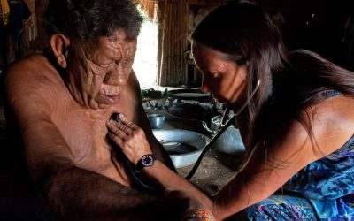 Support the indigenous peoples. Help food, medicines and hygiene material get to the villages