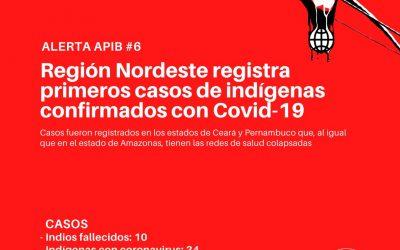 #06: Região Nordeste registra primeiros casos de indígenas confirmados com covid-19