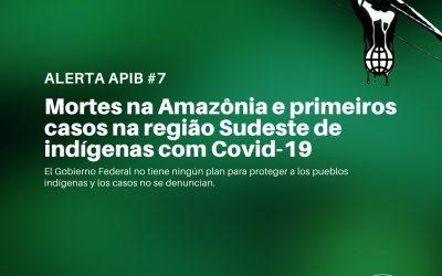 #07: Mortes na Amazônia e primeiros casos na região sudeste de indígenas com covid-19