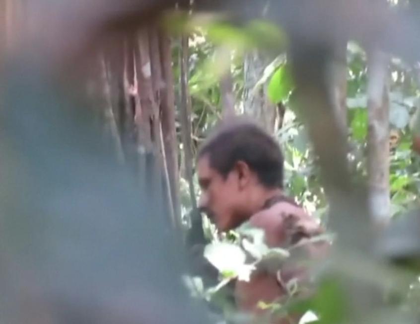 Incidente entre Guajajaras e isolados Awa Guajá evidencia negligência do governo em proteger os territórios indígenas