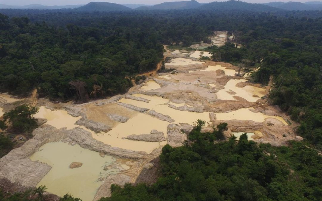 Demarcação da Terra Indígena Apyterewa sob risco no STF