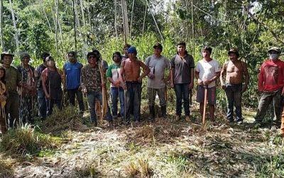 CIDH emite medida cautelar obrigando Brasil a proteger povos Guajajara e Awá no Maranhão