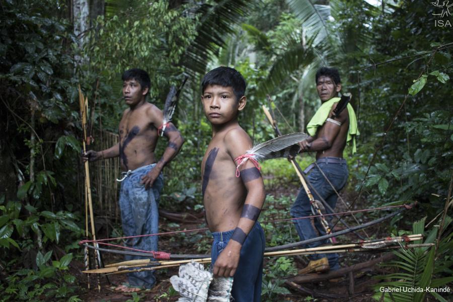 Relatório da ONU aponta que povos indígenas são os melhores guardiões das florestas da América Latina e do Caribe