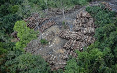 Acordo com Bolsonaro é endosso à tragédia, dizem ONGs a Biden