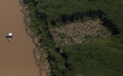 Indígenas Kayapó pedem fim de cooperativa criada por madeireiros