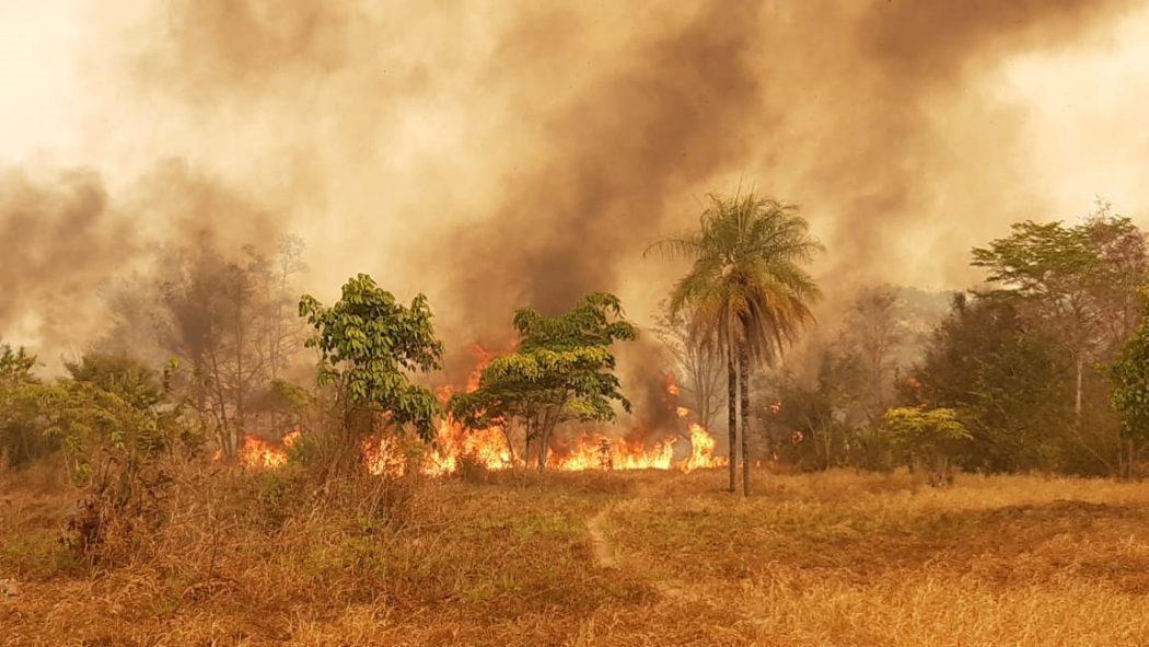 Projeto que revê demarcação de terras indígenas ganha força na CCJ da Câmara