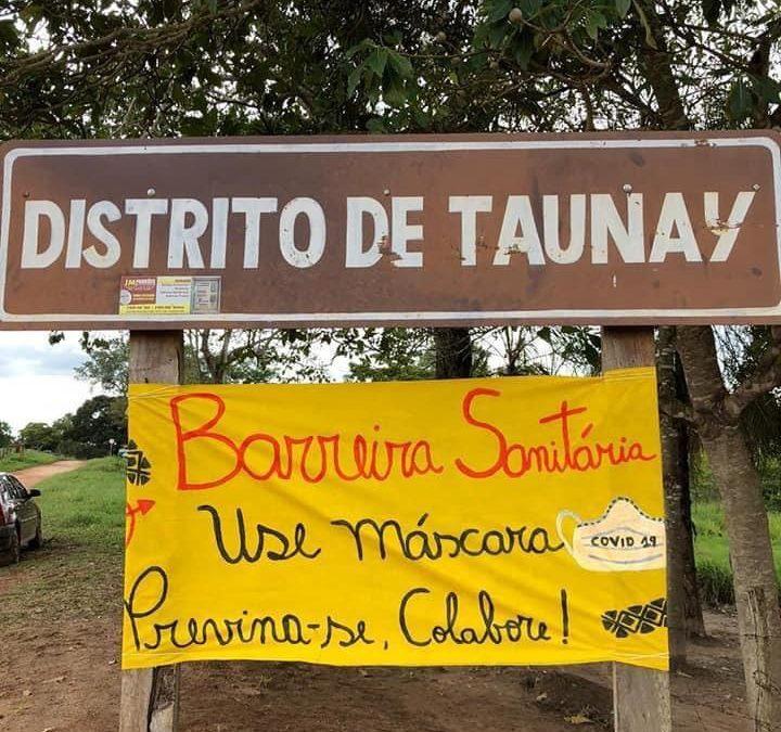 APIB e Conselho Terena acionam MPF para vacinação do povo Terena, no distrito de Taunay (MS)