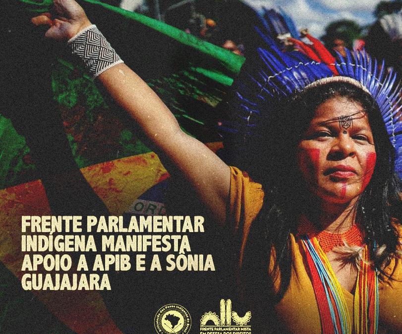 Frente Parlamentar Indígena manifesta apoio a Apib e a Sônia Guajajara