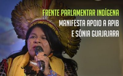 Frente Parlamentar Indígena manifesta apoio à Sônia Guajajara