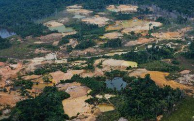 APIB pede que STF determine a retirada dos invasores da TI Yanomami