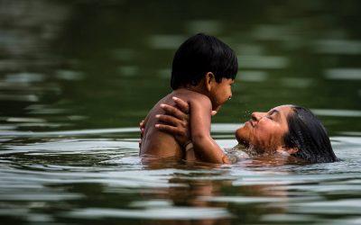 Transformação ecológica em larga escala ameaça Amazônia, diz painel global