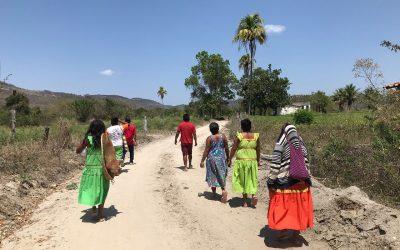 Retomada Maxakali ocupa terra para construir a Aldeia Escola Floresta